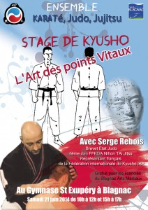 affiche-stage-kyusho-BAM