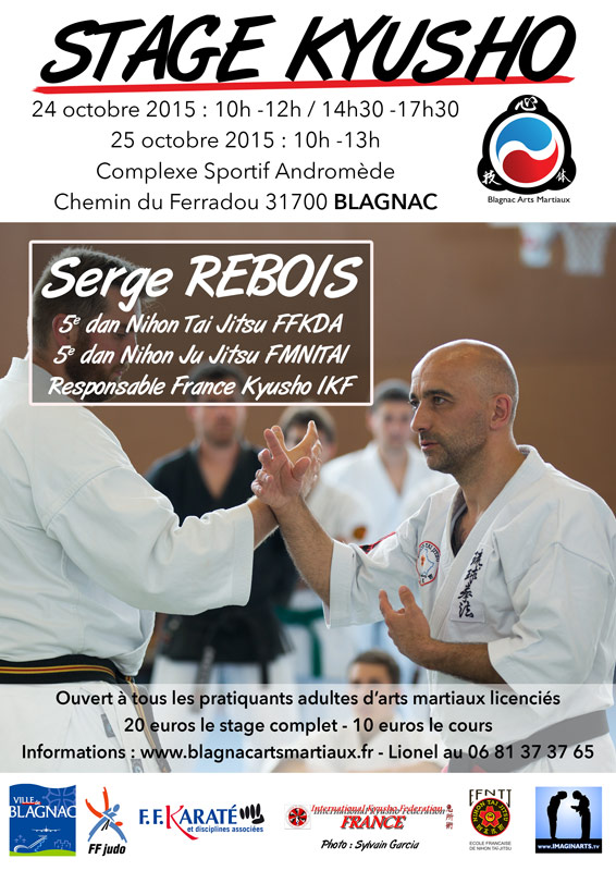 stage kyusho blagnac toulouse 2015