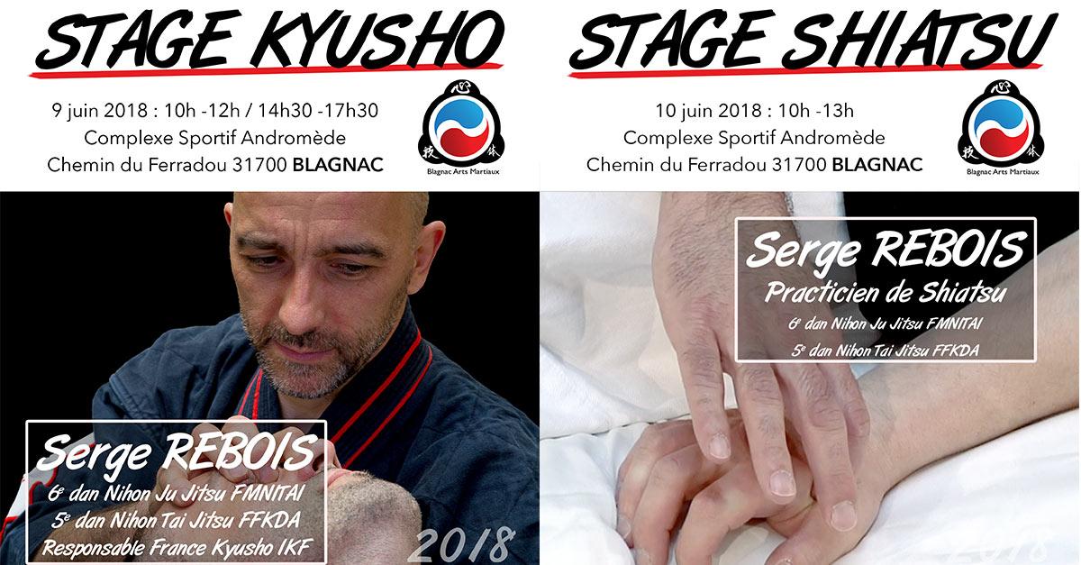 stage serge rebois kyusho shiatsu toulouse blagnac juin 2018