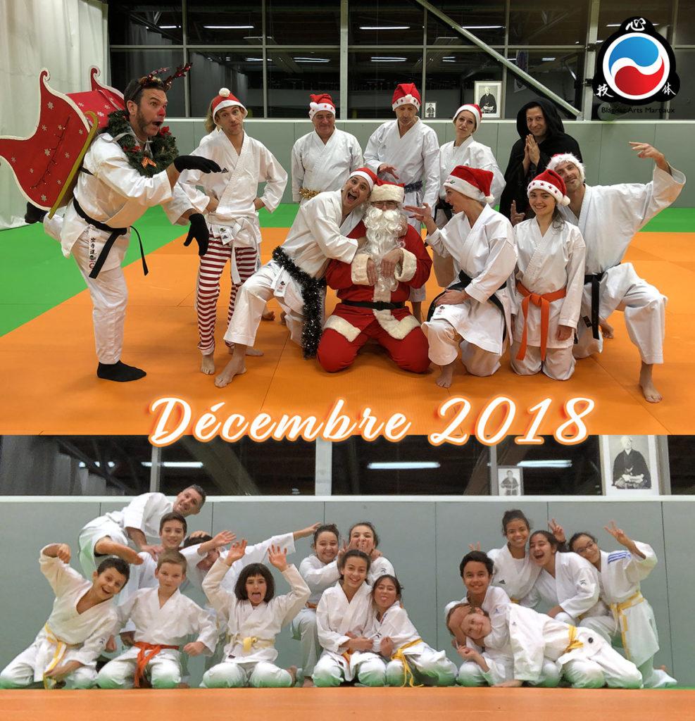 Cours de karate à Blagnac Toulouse