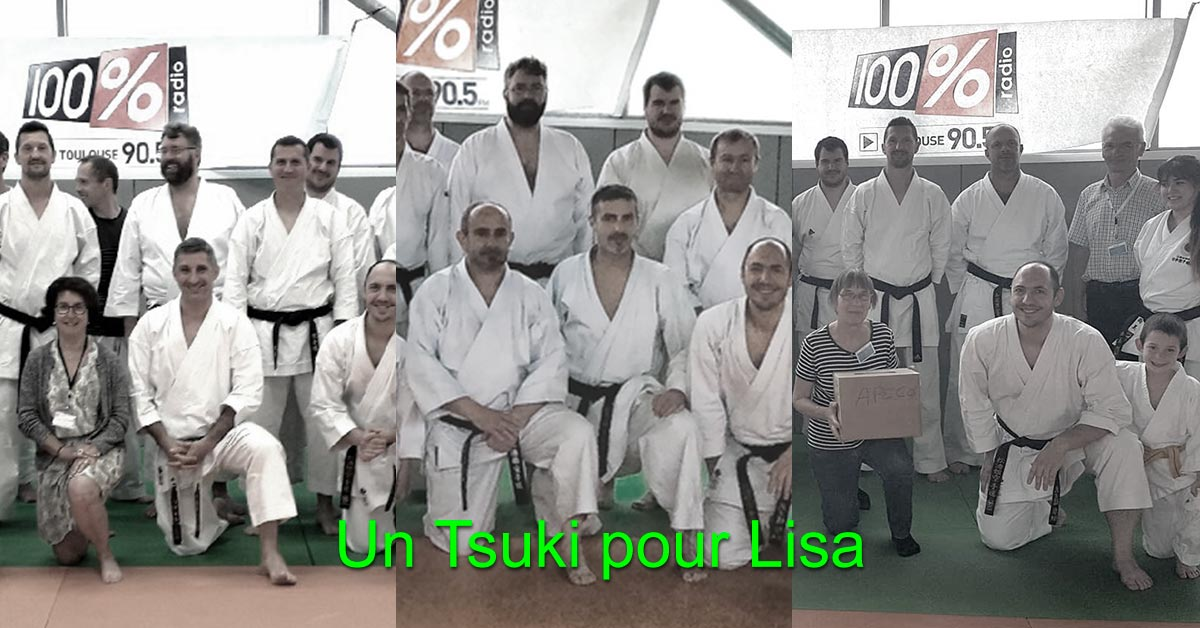 Calendrier Judo Occitanie.Bilan Un Tsuki Pour Lisa Blagnac Arts Martiaux